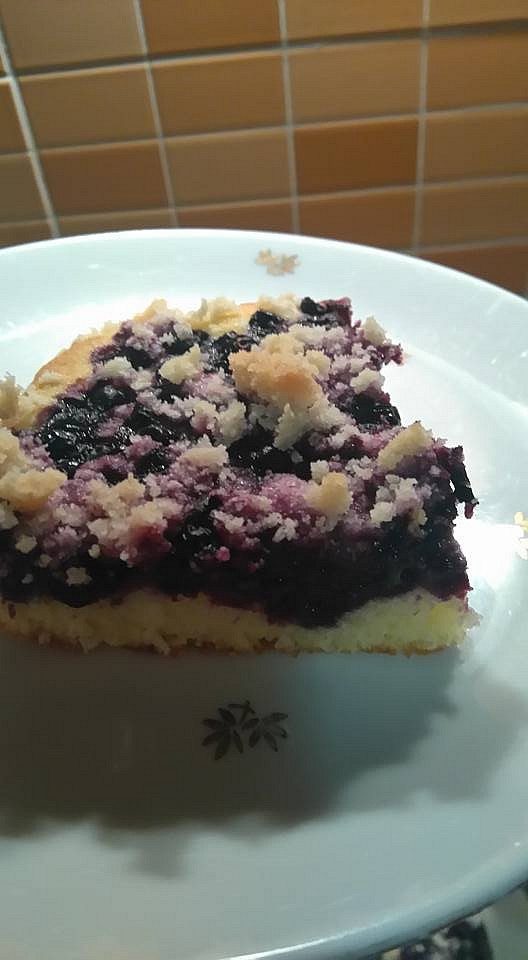 Borůvkový koláč od Aly